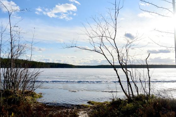 Üks pildike mu Soome reisist. Jäätunud järv, lumekuhjakesed, sinine taevas ning vaikus, vaikus, vaikus. Peame juba plaani, et sügisel sinna tagasi minna.