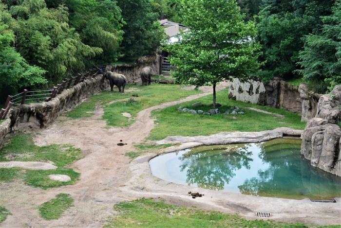 10 loomaaed (15)