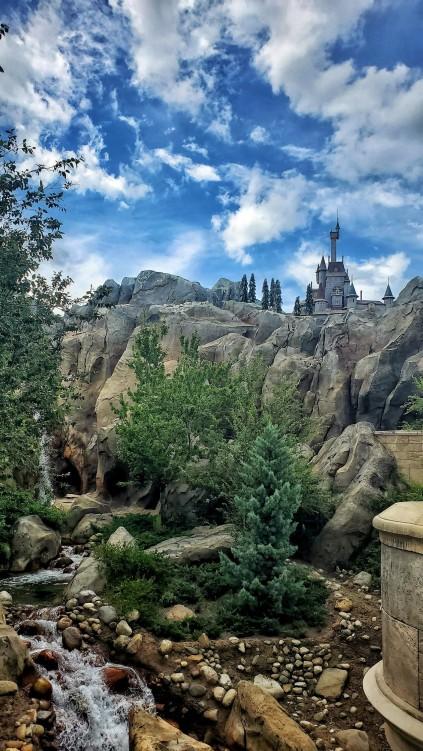 Magic Kingdom 2020 (21)