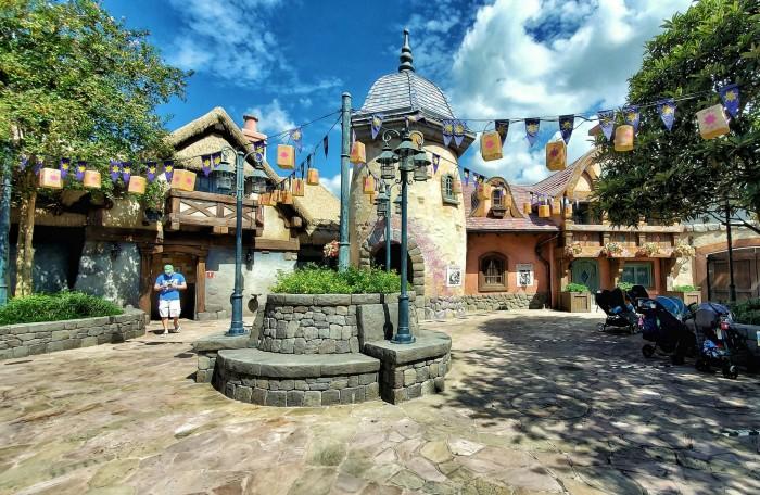Magic Kingdom 2020 (6)